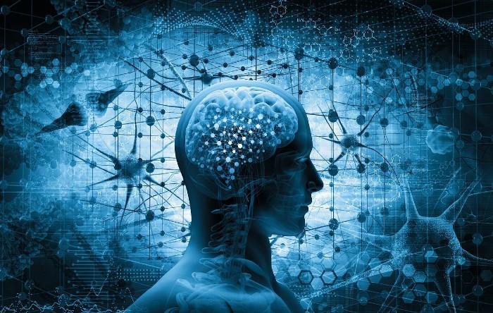 Brain Health And CBD Oil