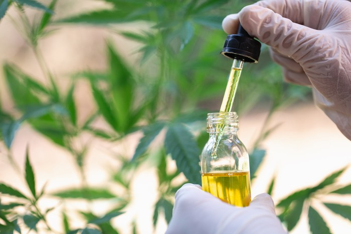 CBD in Treating Cancer
