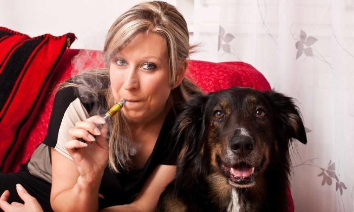 Vape Around Your Pets